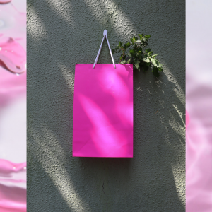 Soft Pink Paper Bags